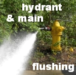 hydrant and main flushing icon.jpg